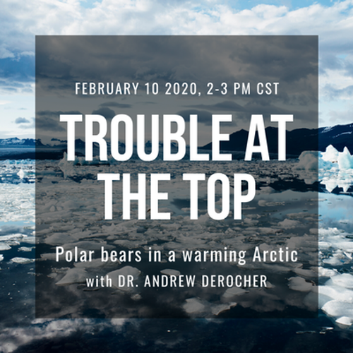 Troubled At the Top Webinar
